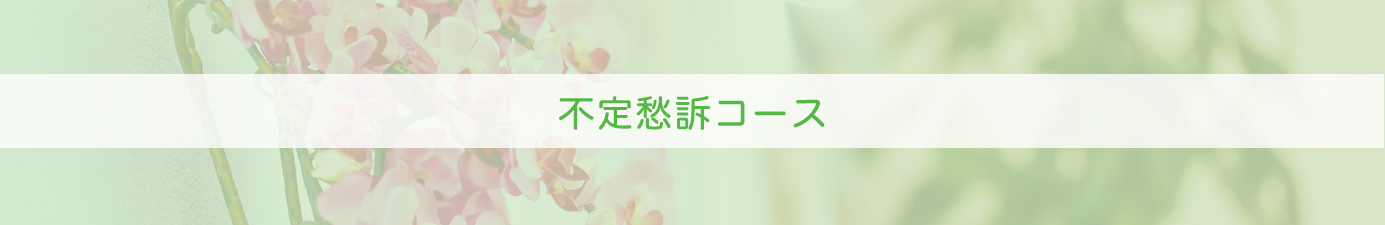 huteisyusohedder - 不定愁訴コース