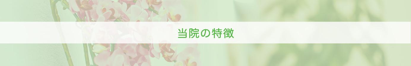 tointokutyohedder - 当院の特徴